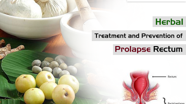 Herbal Treatment and Prevention of Prolapse Rectum